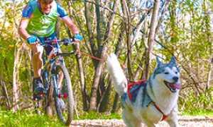 b cani cross Folini gara gattinara1