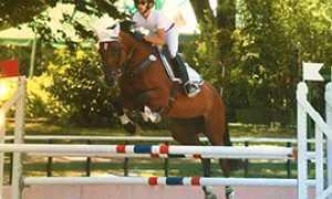 b piovani cavallo salto frontale