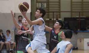 domo basket under14