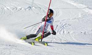 sci slalom paletto speciale